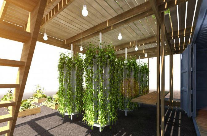 Urban gardening kit