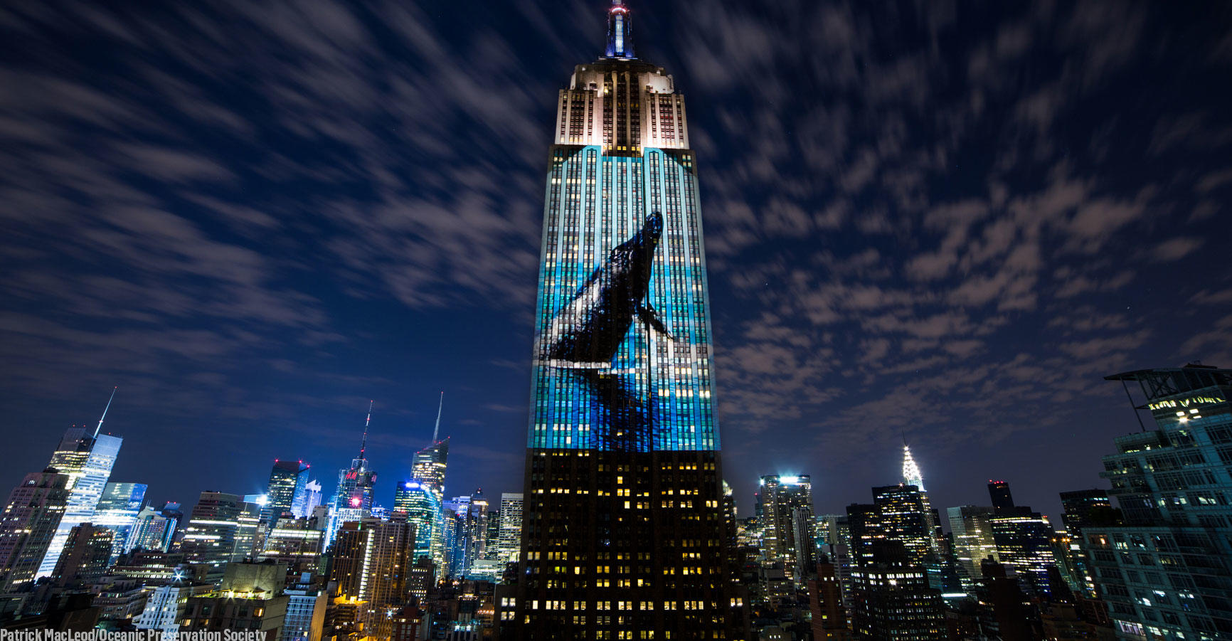 Racing Extinction Challenge graphic