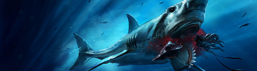 Prehistoric Shark Was a Buzzsaw Killer