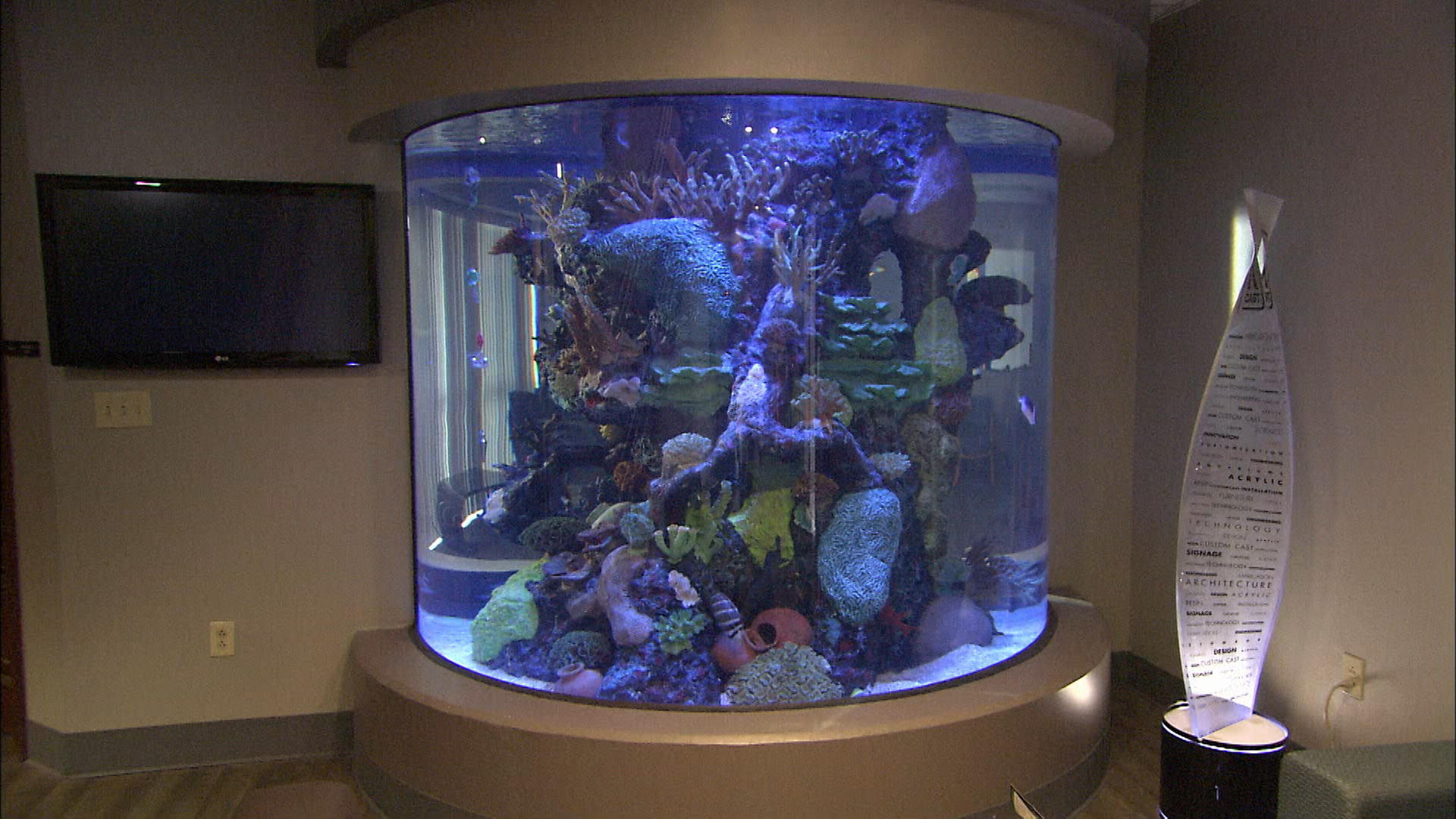aquarium windows how it 39 s made discovery science. Black Bedroom Furniture Sets. Home Design Ideas
