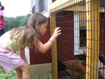 Check out  these pics of the Gosselin sextuplets enjoying their summer playing outdoors and celebrating their sixth birthday.  Here, Alexis examines the chicken coop. The kids have a backyard coop full of chickens at their home in Pennsylvania.