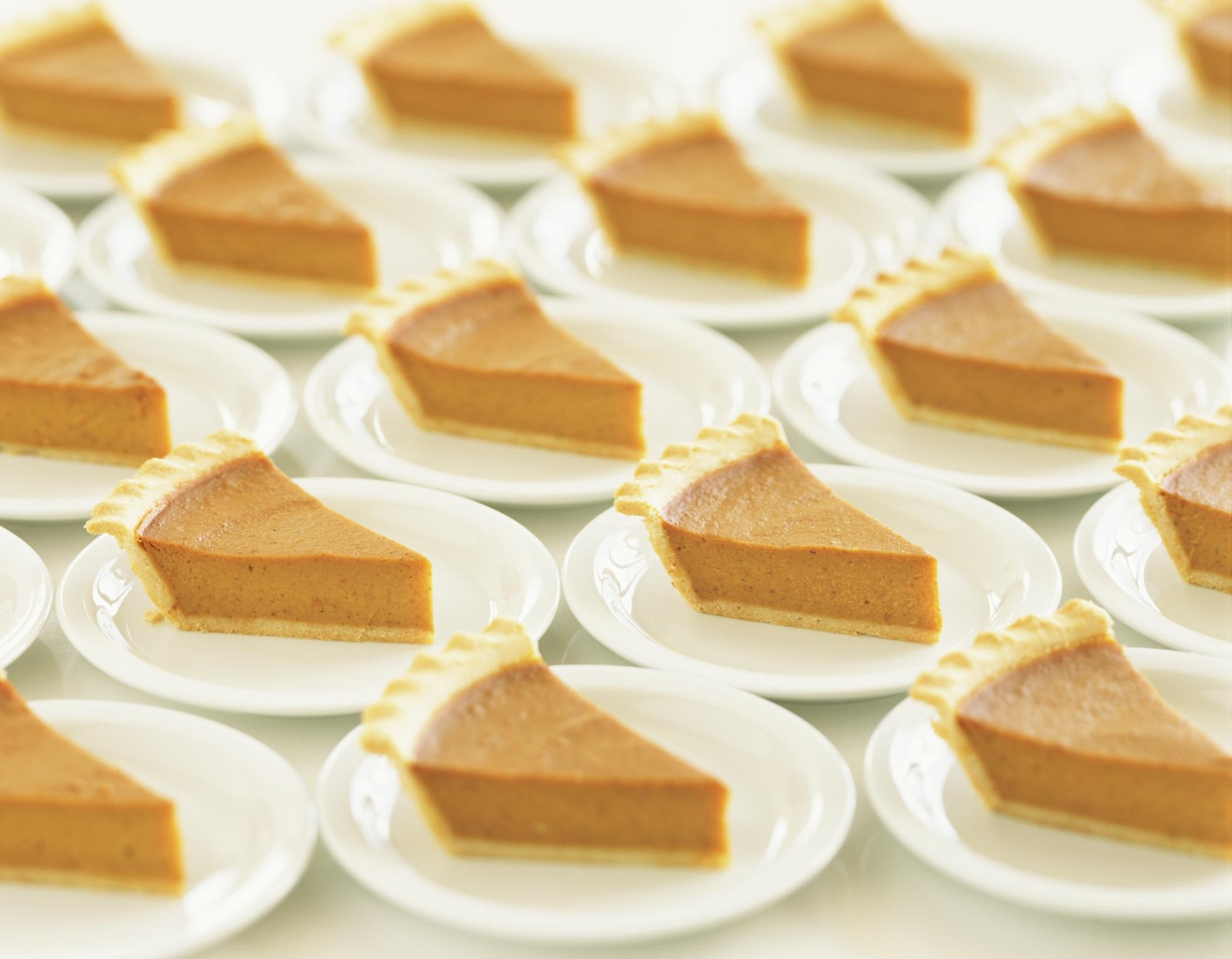 media-images-promos-2011-11-duggars-thanksgiving-fifteen-pumpkin-pies-JPG