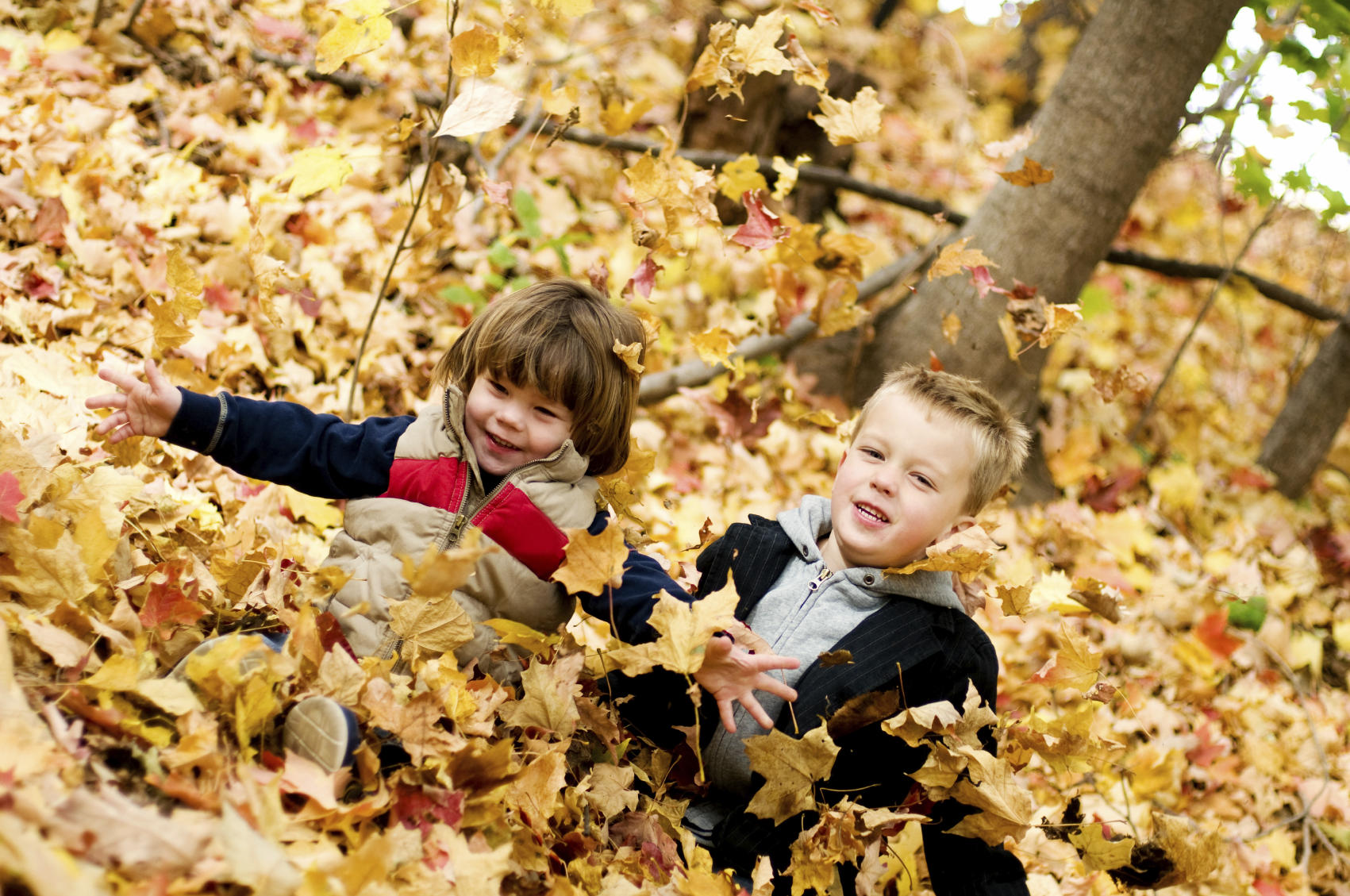 A Crafty Autumn Leaf Project for Kids