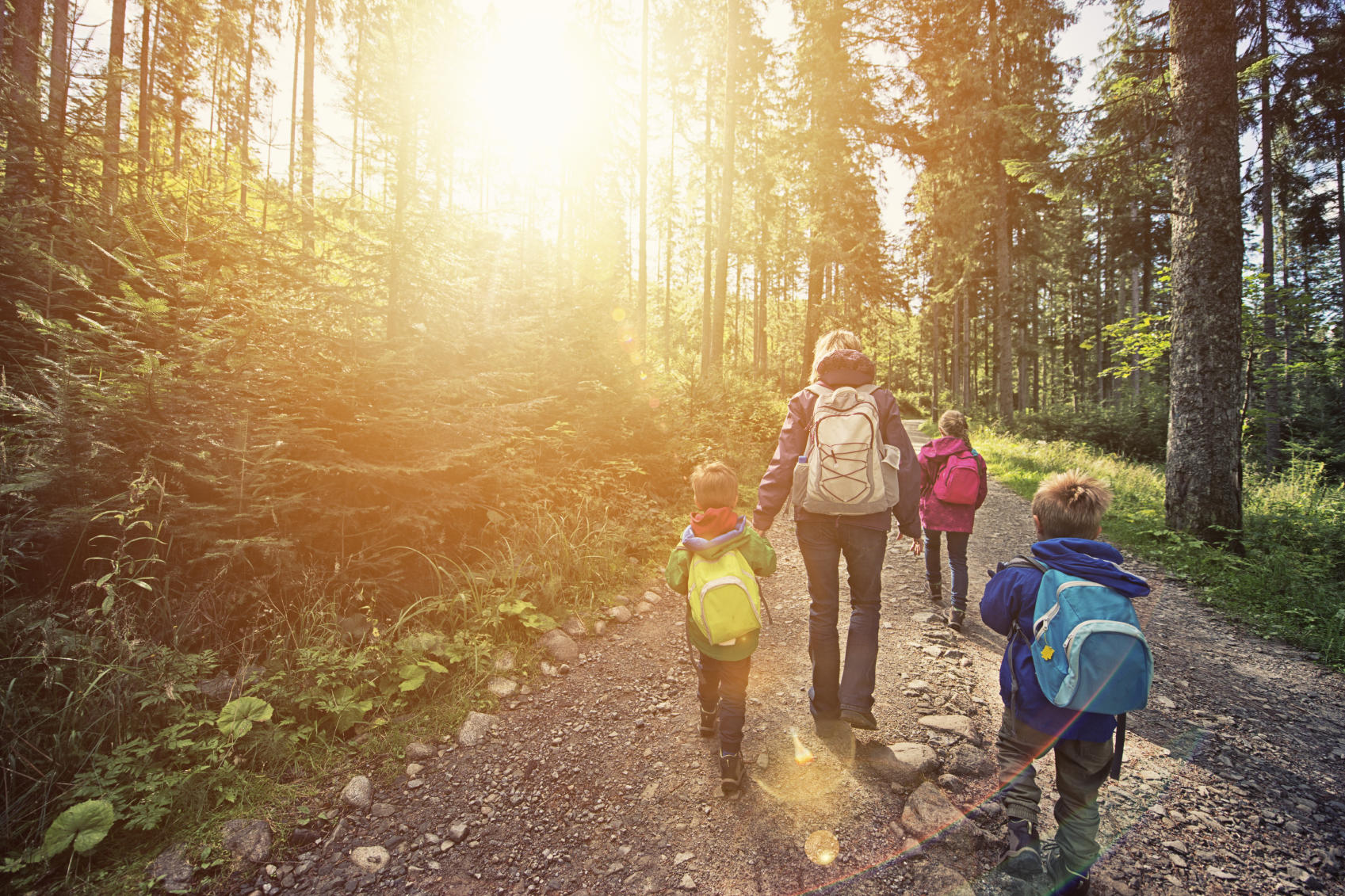 picture of kids hiking in the forest with mother