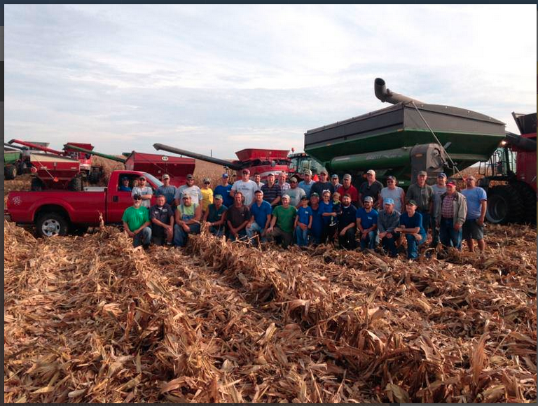 town harvests corn
