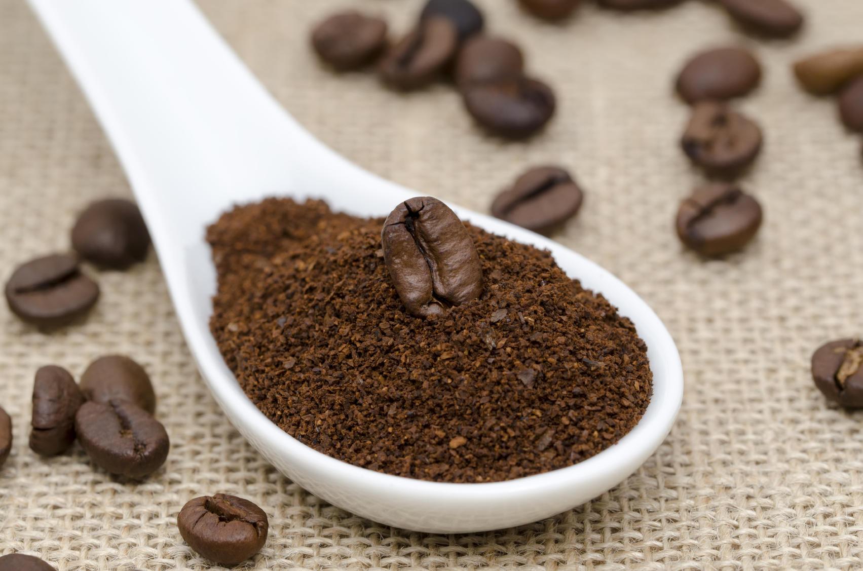 coffee bean on ground