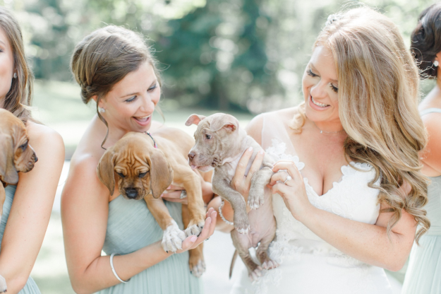The puppies brought our a naturalness in the wedding party according to photographer Caroline Logan