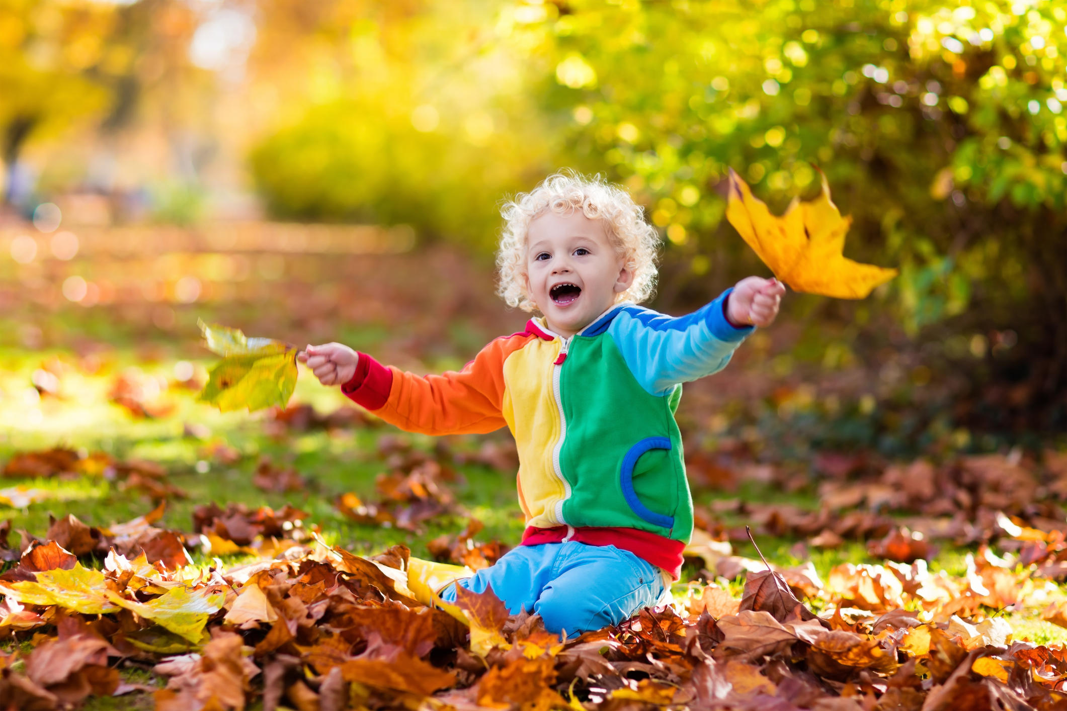 Kids play in autumn park. Children throwing yellow and red leaves. Little boy with oak and maple leaf. Fall foliage. Family outdoor fun in autumn. Toddler kid or preschooler child in fall.