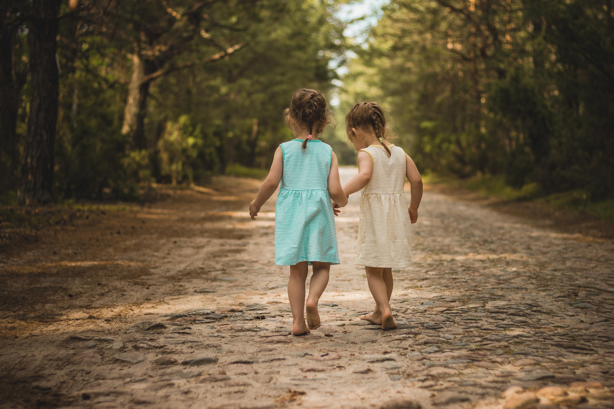 Photo of two cute twins walking along a forest road