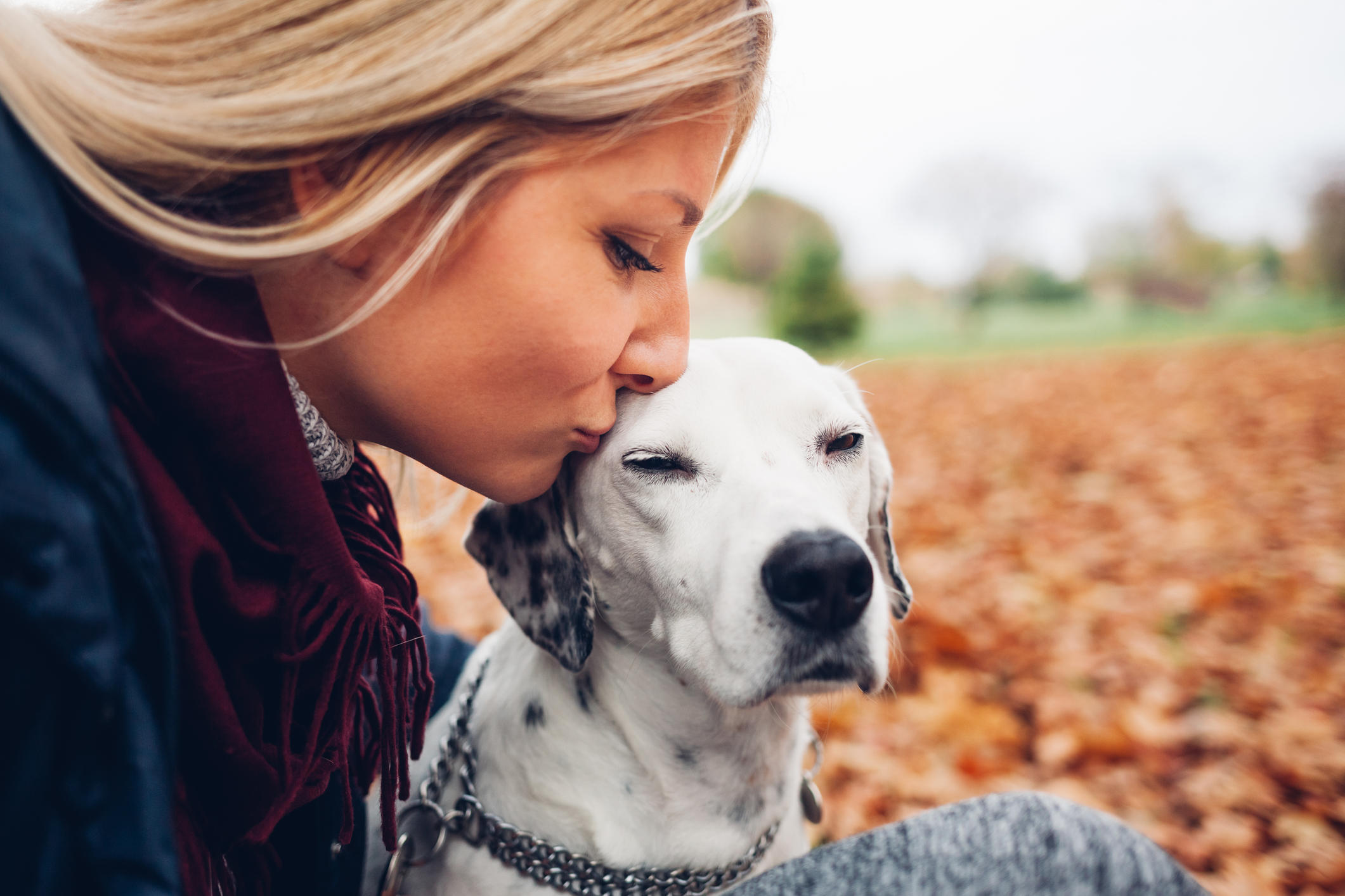 Closeup of happy owner woman kissing dog in autumn park