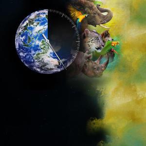 Hillbilly handfishin animal planet for Pool show animal planet