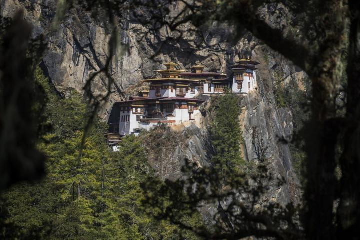 Tigers & Legend in Bhutan