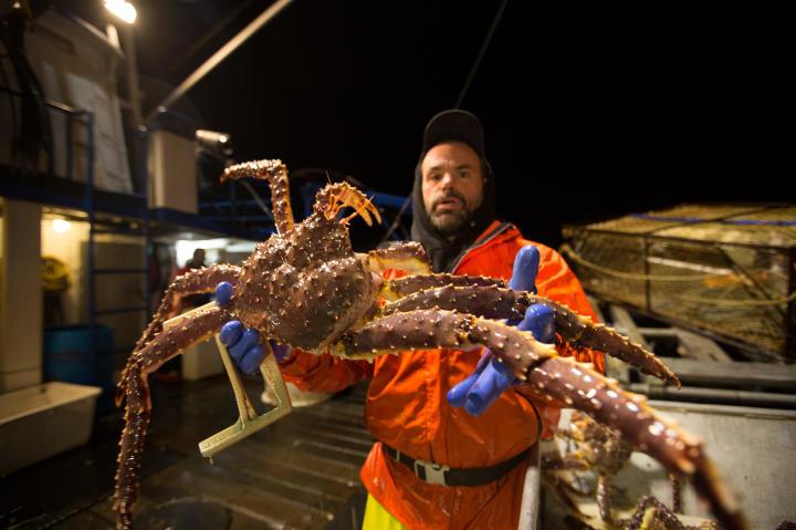 Matt Bradley with a monster crab.