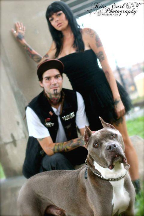 Pit Bulls amp Parolees  Wikipedia