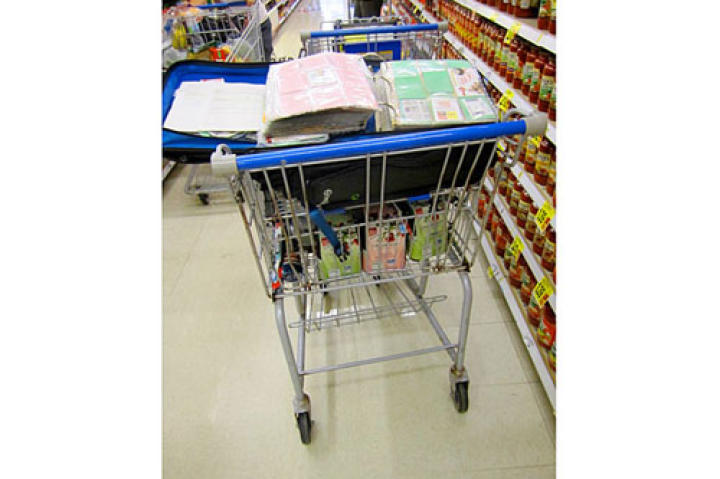 Every expert couponer knows how to organize their savings in a master couponing album.