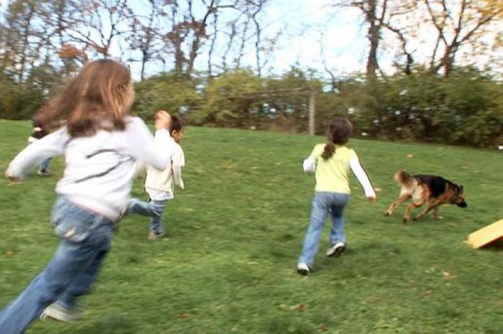 Eeeeeeeeee!!!!  Shoka!!!  The kids play with their old buddy.