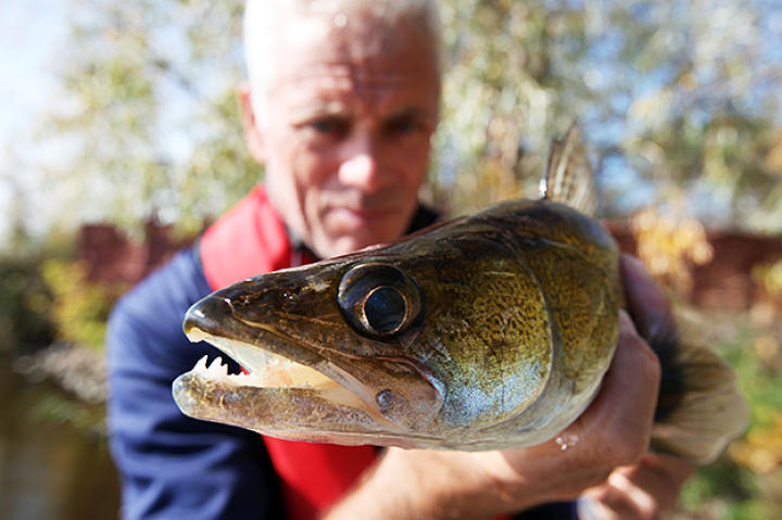 Jeremy Wade with a river monster in Chernobyl.
