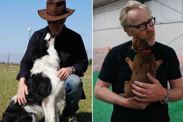 "Clearly Adam has a way with animals, but in particular, he LOVES dogs. ""My dogs sleep on the bed. My family is a dog family."""