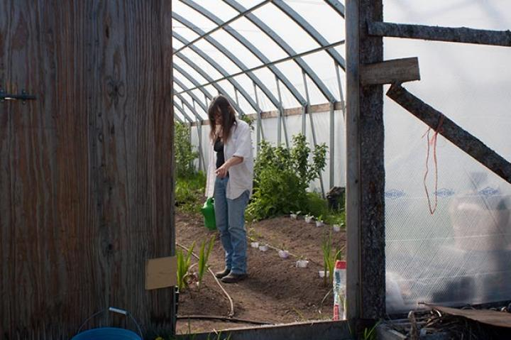 Charlotte tends to the garden in the high tunnel, making sure that this summer's crop grows bug, strong and tall.