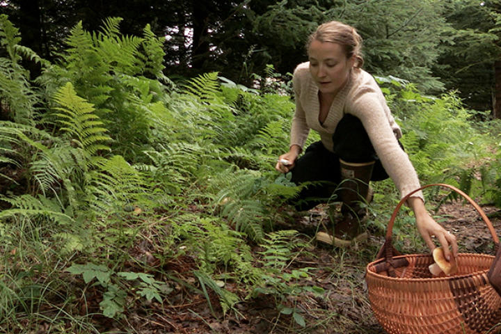 Eve Kilcher takes advantage of what the forest has to offer during the warmer months in Alaska, gathering some mushrooms that she came across in the forest.