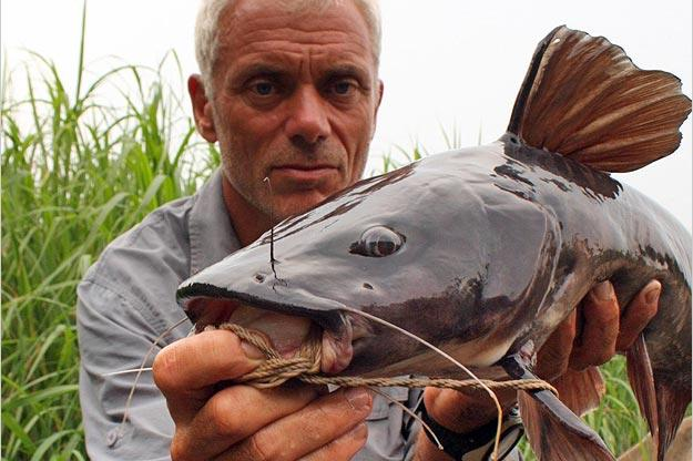 Jeremy Wade with a relatively small Kamba catfish. This fish is capable of growing to 5 feet and 300 pounds, or perhaps bigger.