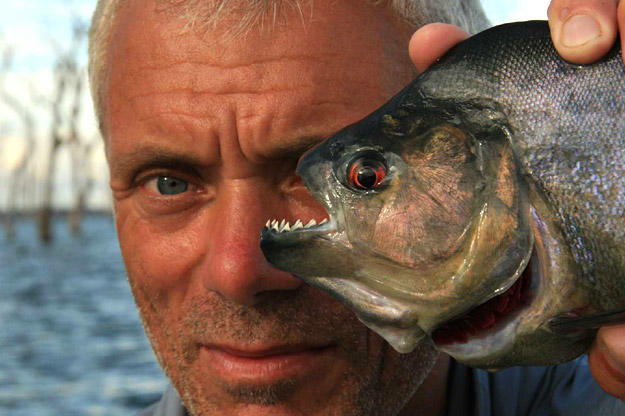 Jeremy Wade with a 1-pound black piranha, the largest of the roughly 40-known piranha species.