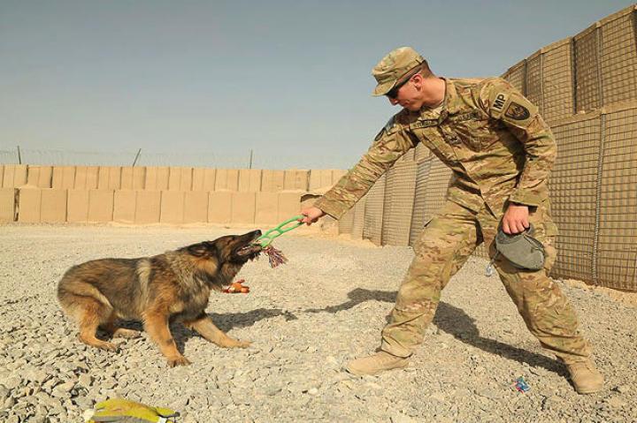 Sgt. Benjamin Stopyra and Gero