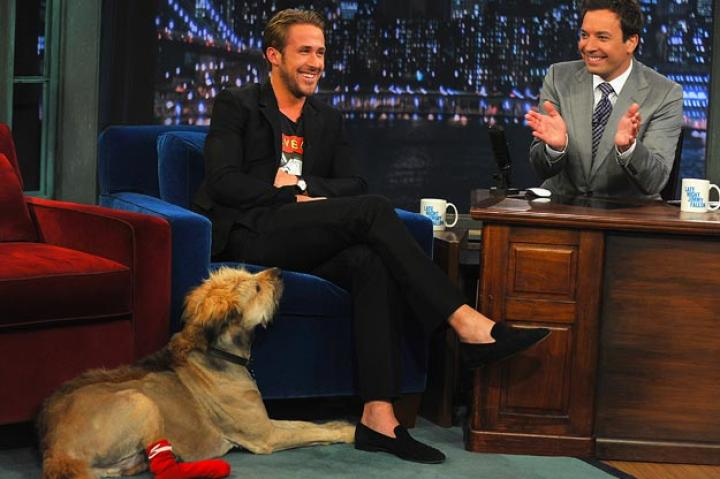 "Ryan Gosling   Actor Ryan Gosling made an appearance ""Late Night with Jimmy Fallon"" with his dog George.   Theo Wargo/Getty Images"