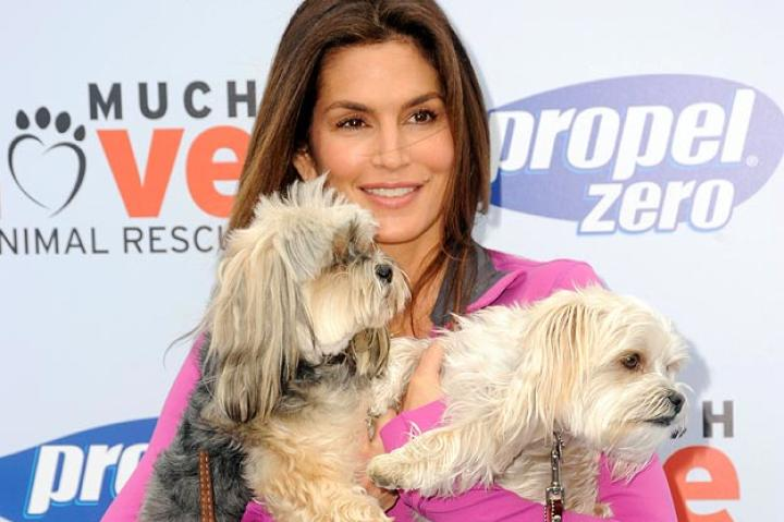 Cindy Crawford   Cindy Crawford hosts the Propel Zero to 1000 Celebrity Dog Walking Event at Church Estate Vineyards in Malibu, California.   RD / Kenney /Retna Ltd./Corbis
