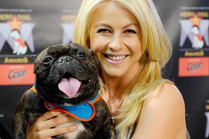 "Julianne Hough   Julianne Hough poses with therapy dog Yazhi while she attends the kick-off voting campaign for America's First Ever National ""Hero Dog Awards.""   Jamie McCarthy/WireImage/Getty Images"