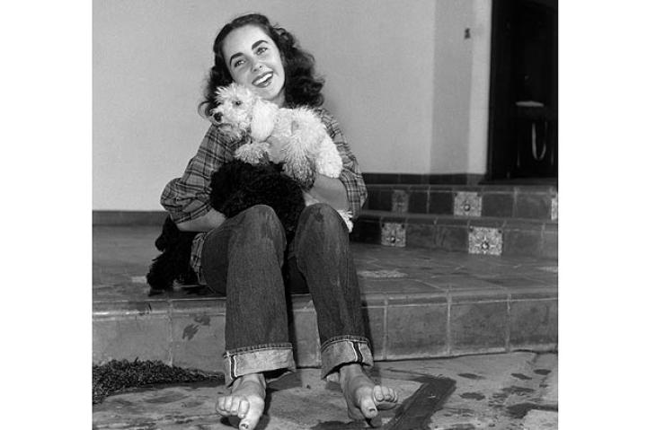 British-born actor Elizabeth Taylor, wearing a plaid shirt and jeans rolled up at the cuff with bare feet, holding a poodle and smiling, circa 1947
