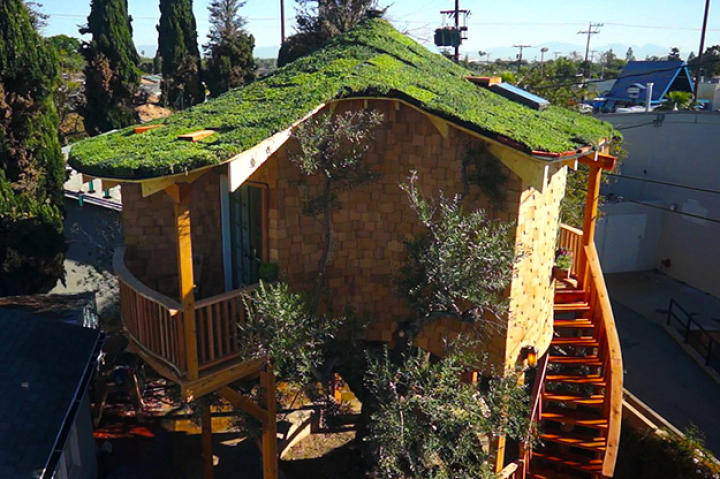 Treehouse Masters, Irish Cottage, Huntington Beach, CA