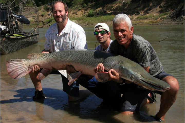 Jeremy Wade holds a nearly 7-feet-long, 111-pound alligator gar with Mark Spitzer and guide Bubba Bedre.
