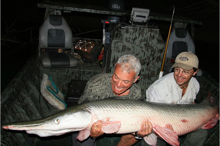 This alligator gar in River Monsters were caught in the Trinity River in Texas. The river, which flows into the Gulf of Mexico, is winding and muddy with lots of dead wood.