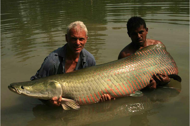 Jeremy Wade with a 150-pound arapaima.