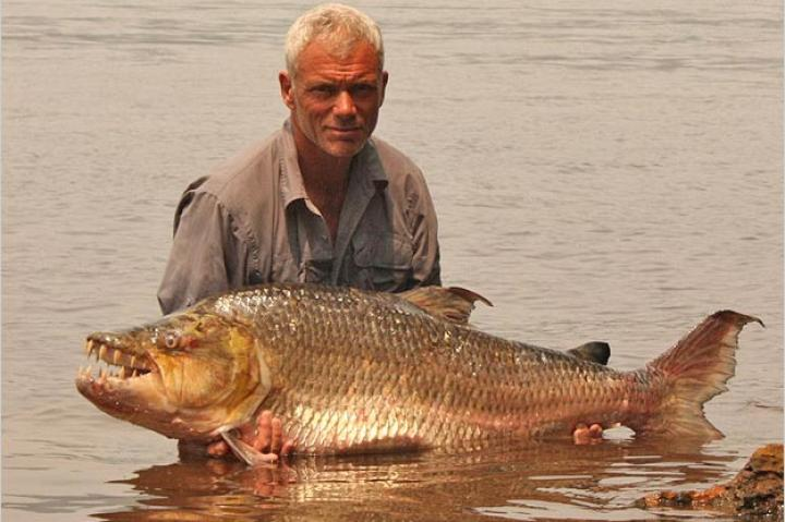 Jeremy Wade with a goliath tigerfish, a giant-sized relative of the piranha and one of the hardest freshwater fish in the world to hook and land