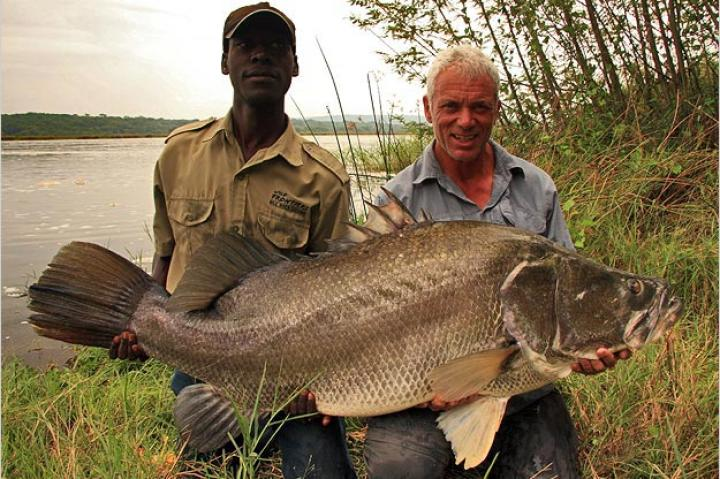 Jeremy Wade with a Nile perch. The Nile perch is considered one of the world's 100 worst invasive species, though Jeremy caught this one in its native habitat.