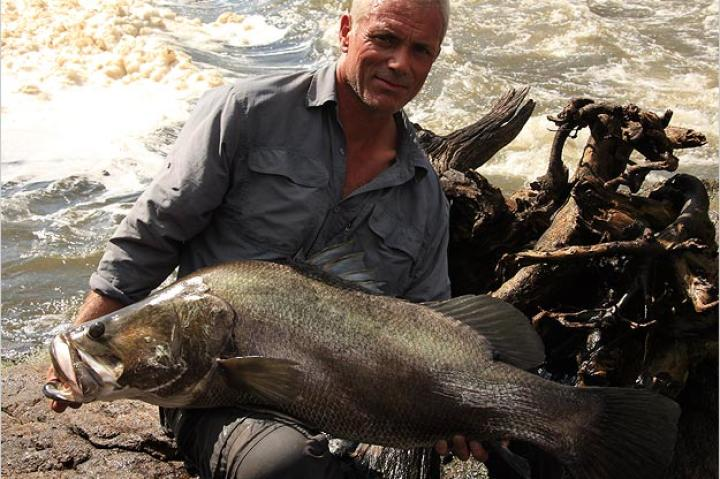 It's said that the Nile perch is a relatively easy catch. It's a strong fish, but the smaller specimens can be captured with relatively lightweight tackle.