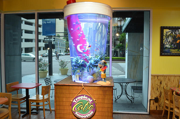 Tropical Smoothie Tank