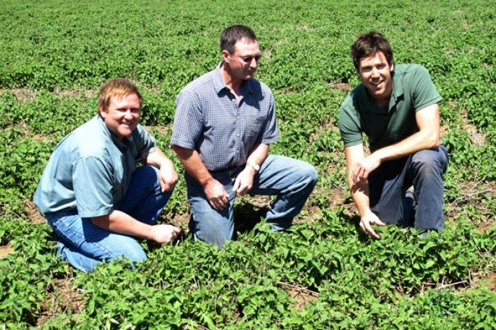 John Fulton with farm managers in catnip field