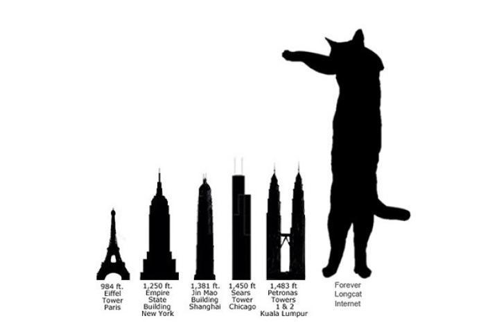 comparison-to-landmarks