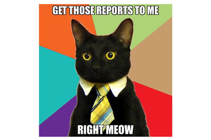 get-those-reports-to-me