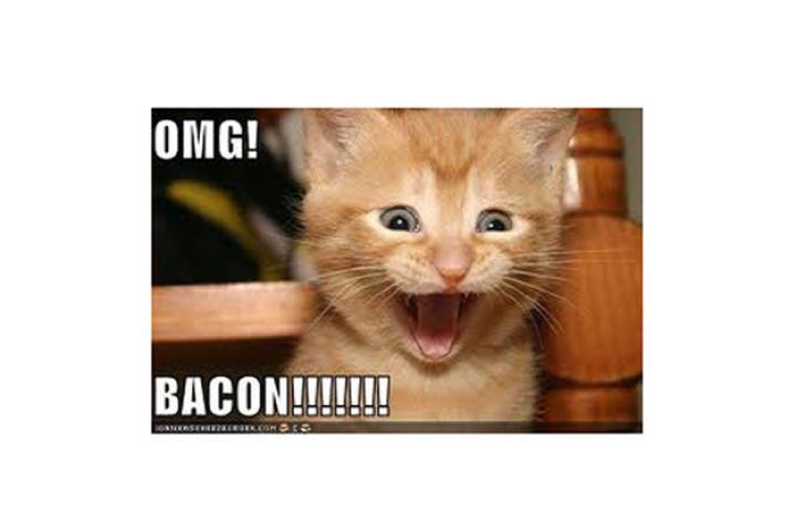 omg-bacon