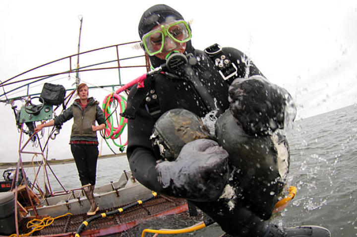Zeke Tenhoff does a cannonball to get things started. Check out the cool jury-rigged steering controls next to Emily.