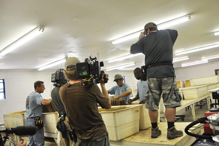Doug Glover, Troy Paff and Dave Barsky all capture the action as James and Bill from Ghann's Crickets show Mike Rowe how to ... do something with crickets.