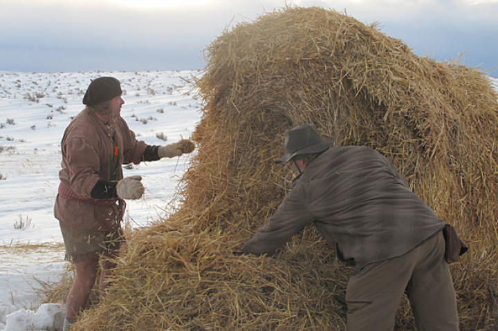 Cody and Dave rearrange a nearby hay bale into a temporary shelter. The pair are very familiar with the insulating power of straw, used by humans for centuries to help shield flesh from the cold.  As a bonus, Dave and Cody flushed out the bale's previous inhabitants — mice — and had them for a snack.
