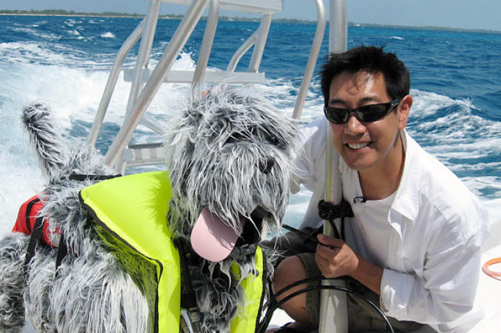 Do dogs splashing about in the water attract sharks? Grant Imahara put his robot-making skills to good use for Shark Week 2008.