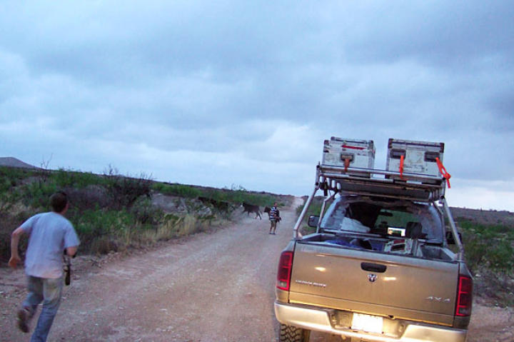 On a back road in Tornado Alley, Matt hustles to help Brandon and the production crew deal with a livestock roadblock.