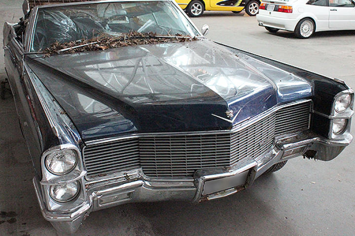The Cadillac arrives at Fantomworks full of leaves and dirt.