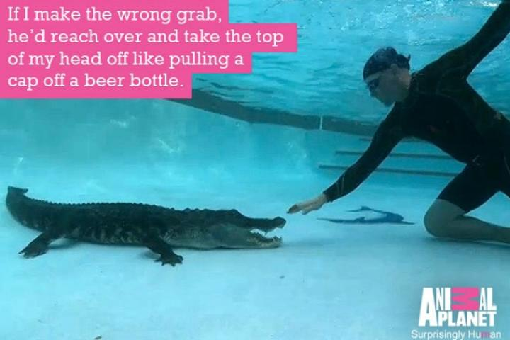 Gator boys quotes and pictures gator boys animal planet for Pool show on animal planet